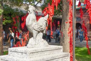 Chine-Temple taoïste-Signe du zodiac